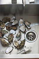 Oysters in kitchen sink elevated view close-up