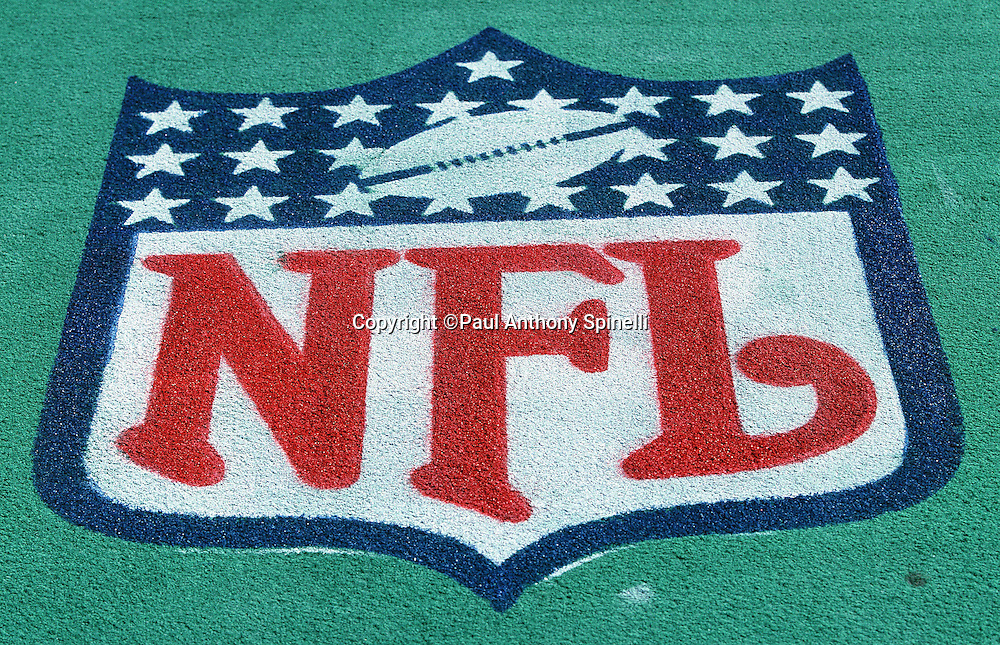 The NFL shield logo is painted on the field turf for the Detroit Lions NFL football game against the Pittsburgh Steelers on Sept. 3, 1995 in Pittsburgh. The Steelers won the game 23-20. (©Paul Anthony Spinelli)