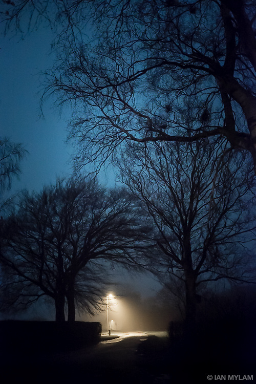 Lamp Post in Winter - Isle of Funen, Denmark