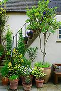 Mansion and florals, Chanticleer Gardens, Wayne, PA