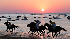 AUG 18 2013 Horse Racing at Cadiz beaches in Cadiz