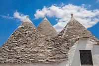 I trulli. La storia di questi edifici molto particolari &egrave; legata a un editto del Regno di Napoli che nel XV secolo sottoponeva ad un tributo ogni nuovo insediamento urbano. I conti di Conversano, proprietari del territorio su cui sorge oggi Alberobello, imposero allora ai contadini inviati in queste terre di edificare a secco, senza utilizzare malta, le loro abitazioni, in modo che esse potessero configurarsi come costruzioni precarie, di facile demolizione.<br /> <br /> <br /> Coperture dei trulli<br /> <br /> <br /> Il Trullo siamese<br /> Dovendo quindi utilizzare soltanto pietre, i contadini trovarono nella forma rotonda con tetto a cupola autoportante, composto di cerchi di pietre sovrapposti, la configurazione pi&ugrave; semplice e solida. I tetti a cupola dei trulli sono abbelliti con pinnacoli decorativi, la cui forma &egrave; ispirata a elementi simbolici, mistici e religiosi.<br /> Essi erano realizzati dalla maestranza assunta per la costruzione del trullo e ne identificavano l'artigiano. In base alla qualit&agrave; della fattura del pinnacolo si poteva dunque identificare non solo la destrezza artigianale del costruttore, ma anche il valore della costruzione. Una maggiore spesa nella costruzione del trullo permetteva di individuare pertanto, le famiglie pi&ugrave; abbienti da quelle meno facoltose.<br /> Per quanto riguarda i simboli dipinti sopra i tetti dei trulli spesso assumono un significato religioso; talvolta possono rappresentare segni dello zodiaco. Pinnacolo e simbolo dipinto insieme formavano una sorta di identificativo civico, in quanto per lungo tempo Alberobello ha visto negarsi un riconoscimento ufficiale da parte dei conti di Conversano.