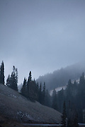 Snow storm in August in Yellowstone National Park.