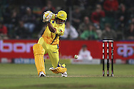 Suresh Raina of the Chennai Super Kings drives a delivery during match 13 of the Airtel CLT20 between The Superkings and the Victorian Bushrangers held at St Georges Park in Port Elizabeth on the 18 September 2010..Photo by: Shaun Roy/SPORTZPICS/CLT20