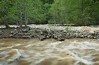 Granite Creek during spring runoff, North Cascades Washington