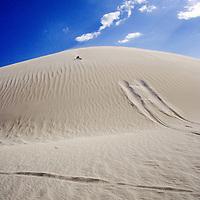 Car tracks in a desert. Lancelin dunes in Australia under blue summer sky
