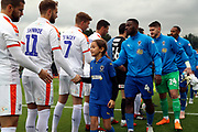 mascot during the EFL Sky Bet League 1 match between AFC Wimbledon and Luton Town at the Cherry Red Records Stadium, Kingston, England on 27 October 2018.