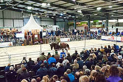 © Licensed to London News Pictures. 01/11/2019. Llanelwedd, Powys, Wales, UK. Bidding gets going at 1.00pm on the first day of the 56th Autumn Cob sale. The Autumn Cob Sale is the largest sale in the World of registered Welsh Cobs Section D, Welsh Ponies of Cob Type Section C and their Part Breds. The sale, held by Brightwells auctioneers, takes place over three days at The Royal Welsh Showground in Builth Wells, Powys, UK, attracting an audience of thousands of Welsh Cob enthusiasts worldwide. Photo credit: Graham M. Lawrence/LNP