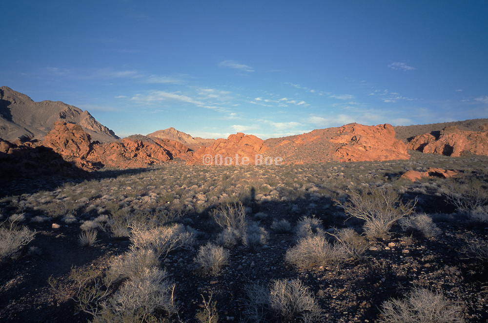 scenic photo of desert and mountain range
