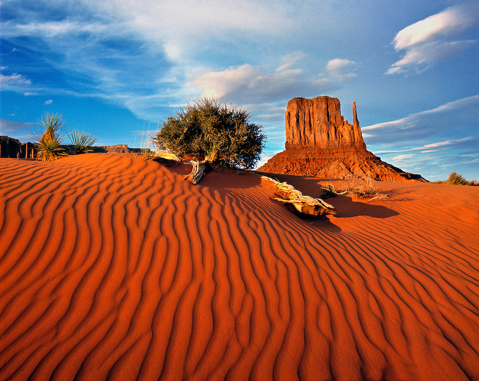 Late afternoon light enhances the wind pattern on a dune beneath the South Mitten, in Monument Valley on the Arizona - Utah border.