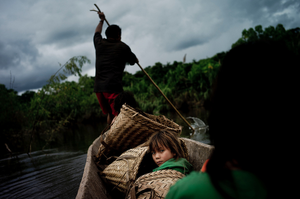Members of a village go to collect bananas and sweet potatos to a farm in the forests. All the food they bring to the village is later shared among every villager. Tsiquireni, Ene River, Peru. April 2012. Photo/Tomas Munita
