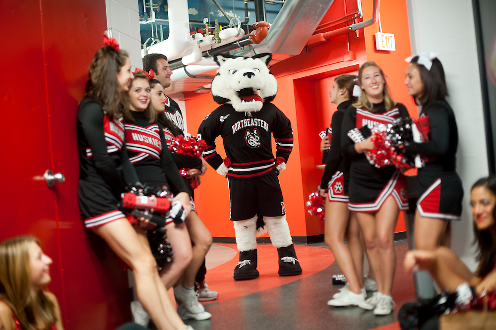 "September 4, 2012 - Northeastern University mascot ""Paws"" is seen waiting in the wings before the President's Convocation in Matthews Arena for members of Northeastern's 115th class."