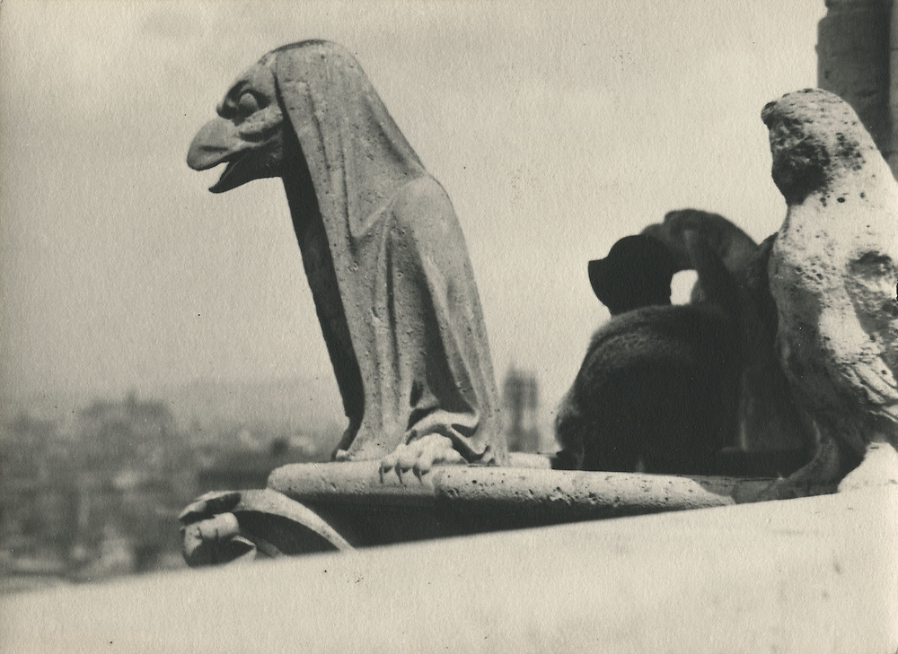 Notre Dame Gargoyle<br /> <br /> Taken by a Japanese photographer who seemed obsessed with Brassai and a member of a Tokyo photo circle associated with the Tokyo Shashin Kenkyu Kai (Tokyo Photographic Research Society). This photographer traveled to Paris to photograph that city and pay homage to Brassai.<br /> <br /> Vintage, matte, gelatin silver print with Agfa-Brovia photo paper watermarks on verso.<br /> <br /> Print size: 7 1/8 inches x 5 1/4 inches (182 mm x 132 mm).<br /> <br /> Condition: Good<br /> <br /> Price:  &yen;570,000 for set of 15 prints<br /> <br /> <br /> <br /> <br /> <br /> <br /> <br /> <br /> <br /> <br /> <br /> <br /> <br /> <br /> <br /> <br /> <br /> <br /> <br /> <br /> <br /> <br /> <br /> .