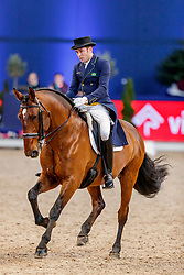 MARCARI OLIVA Joao Victor (BRA), Aron de Massa<br /> München - Munich Indoors 2019<br /> Preis der Liselott und Klaus Rheinberger Stiftung<br /> Grand Prix de Dressage (CDI4*) <br /> Wertungsprüfung MEGGLE Champion of Honour,<br /> Qualifikation für Grand Prix Special<br /> 22. November 2019<br /> © www.sportfotos-lafrentz.de/Stefan Lafrentz