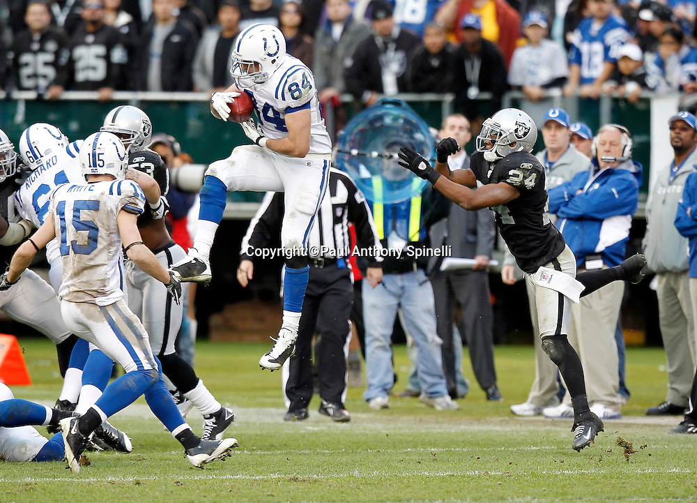 Indianapolis Colts tight end Jacob Tamme (84) recovers an onside kick late in the fourth quarter of the NFL week 16 football game on Sunday, December 26, 2010 in Oakland, California. The Colts won the game 31-26. (©Paul Anthony Spinelli)