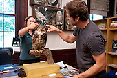 "Director Zack Snyder visits Sanctuary to promote ""Legend of the Guardians: The Owls of Ga'Hoole."""