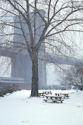 winter scene with Brooklyn Bridge in the background