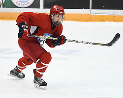 Joshua Barnes of the Cornwall Colts at the 2018 OHL Development Combine at the Tribute Communities Centre in Oshawa on Sunday March 25, 2018. Photo by Aaron Bell/OHL Images