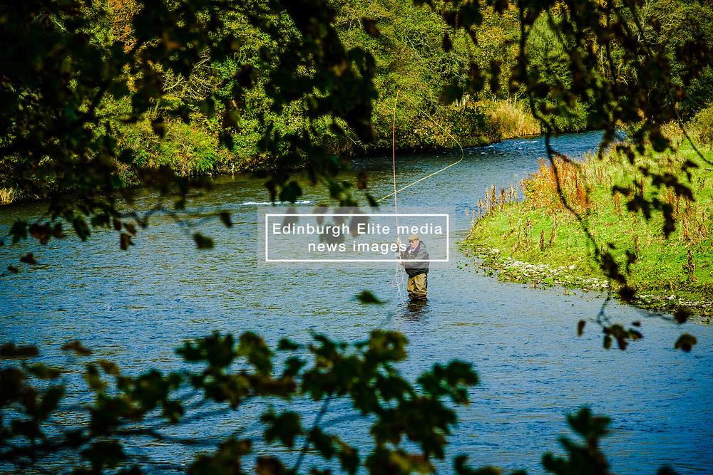 A fisherman on the River Tweed near Innerleithen, Scottish Borders<br /> <br /> (c) Andrew Wilson   Edinburgh Elite media
