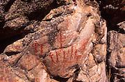 Petroglyph, Salmon River, Idaho<br />