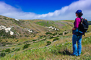 Hiker above Scorpion Canyon, Santa Cruz Island, Channel Islands National Park, California USA
