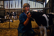 On soft straw of a farm barn lady vet Diana Stapleton checks a young Fresian heifer cow at Manor House Farm, Barnoldswick near Settle, North Yorkshire, England.
