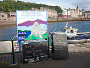 Sign advertising boat trips to local seal colony, Oban, Argyll and Bute, Scotland, UK