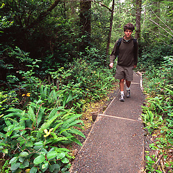 Hiking to Cape Alava, Olympic National Park, Washington, US