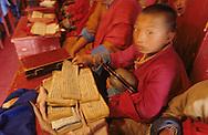 Mongolia. young monk reading in Shankin Barun Kuree new monastery Hurjit area