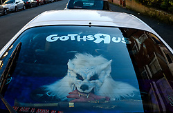 © Licensed to London News Pictures. <br /> 01/11/2014. <br /> <br /> Whitby, Yorkshire, United Kingdom<br /> <br /> A werewolf looks out from the rear window of a car during the Whitby Goth Weekend. <br /> <br /> The event this weekend brings together thousands of extravagantly dressed followers of Victoriana, Steampunk, Cybergoth and Romanticism who all visit the town to take part in celebrating Gothic culture. This weekend marks the 20th anniversary since the event was started by local woman Jo Hampshire.<br /> <br /> Photo credit : Ian Forsyth/LNP