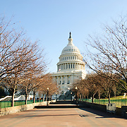 US Capitol in winter with bare trees