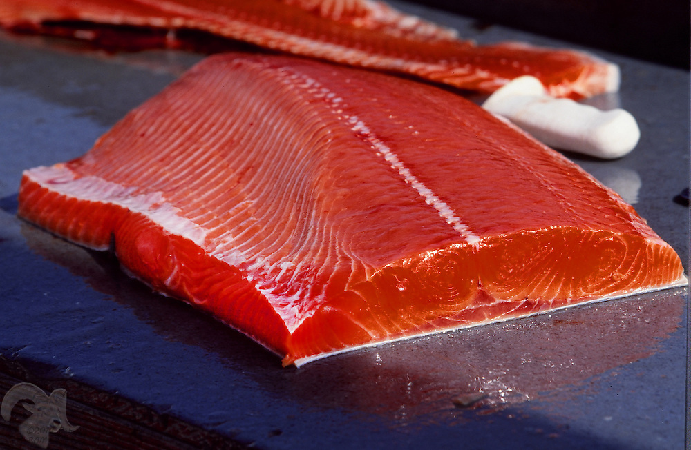 A succulent chunk of fresh Copper River King salmon fillet sits on the cleaning table in the Cordova, Alaska harbor after a commercial fishing opener.