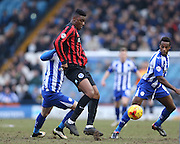 Rohan Ince, Brighton midfielder during the Sky Bet Championship match between Sheffield Wednesday and Brighton and Hove Albion at Hillsborough, Sheffield, England on 14 February 2015.