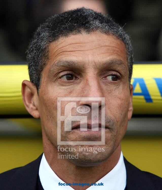 Picture by Paul Chesterton/Focus Images Ltd +44 7904 640267.03/11/2012.Norwich Manager Chris Hughton before the Barclays Premier League match at Carrow Road, Norwich.
