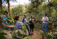 Antigua, Guatemala - March 08, 2015: A tour guide leads a group into the coffee plantation at Finca Filadelfia. Visitors get a firsthand look at each step in the coffee experience culminating in a tasting. CREDIT: Chris Carmichael for The New York Times