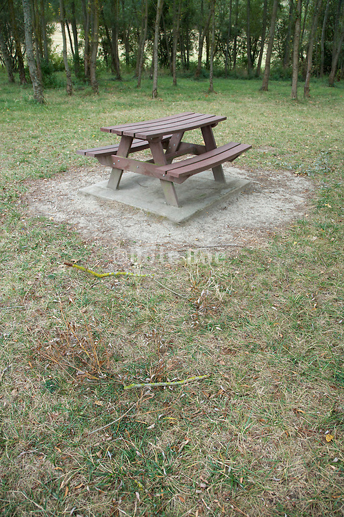 park picnic bench in the woods