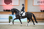 Charlotte Fry - George Clooney<br /> ISAH/KWPN Hengstencompetitie 2016<br /> © DigiShots