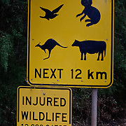 Famous injured wildlife sign with Koalas and Kangooroos.