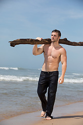 shirtless muscular man in wet jeans carrying driftwood by the ocean
