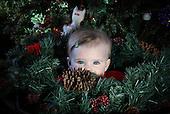 Barnes Christmas 2013