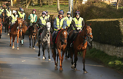 © Licensed to London News Pictures. 10/03/15. Ditcheat , Somerset. Riders from Champion trainer Paul Nicholl's Stables exercise horses with Cheltenham Festival Gold Cup Favourite Silviniaco Conti leading the way ( with large white flash on head leads) . Photo credit : Jason Bryant/LNP