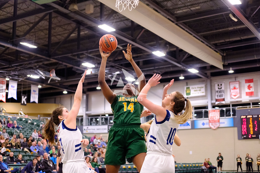 2nd year power forward, Angela Bongomin (14) of the Regina Cougars in action during the Regina Cougars vs Lethbridge on November 3 at University of Regina. Credit Matte Black Photos/©Arthur Images 2018