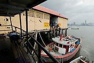 Muelle de Pescadores en casco antiguo de Panamá..Pescadores desembarcan la pesca para ser pesada y distribuida para la venta en la ciudad de Panamá. .Ramon Lepage / Istmophoto..