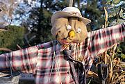 posing scarecrow