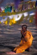 BUddhist Nun at prayer. Anuradhapura.