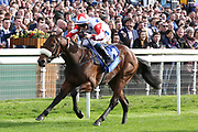 ABERAMA GOLD (1) ridden by Shane Gray and trained by Keith Dalgleish winning The Listed coral.co.uk Rockingham Stakes over 6f (£50,000)  during the York Coral Sprint Trophy meeting at York Racecourse, York, United Kingdom on 12 October 2019.