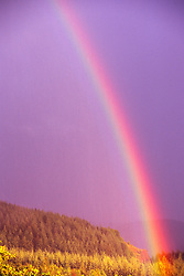Rainbow, Mt. St. Helens National Volcanic Monument, Washington, US