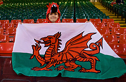 CARDIFF, WALES - Thursday, October 11, 2018: A young Wales supporter with a Dragon hat before the International Friendly match between Wales and Spain at the Principality Stadium. (Pic by Lewis Mitchell/Propaganda)