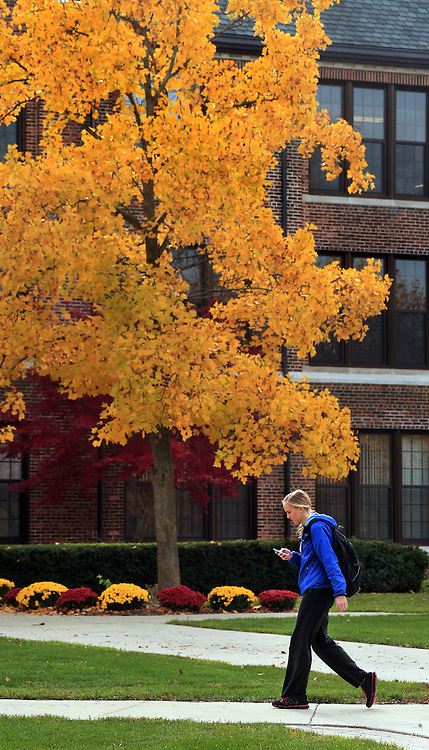 A student walks by Warriner Hall surrounded by an end of the fall color display on the campus of Central Michigan University on Tuesday November 5, 2013. Central Michigan University photo by Steve Jessmore
