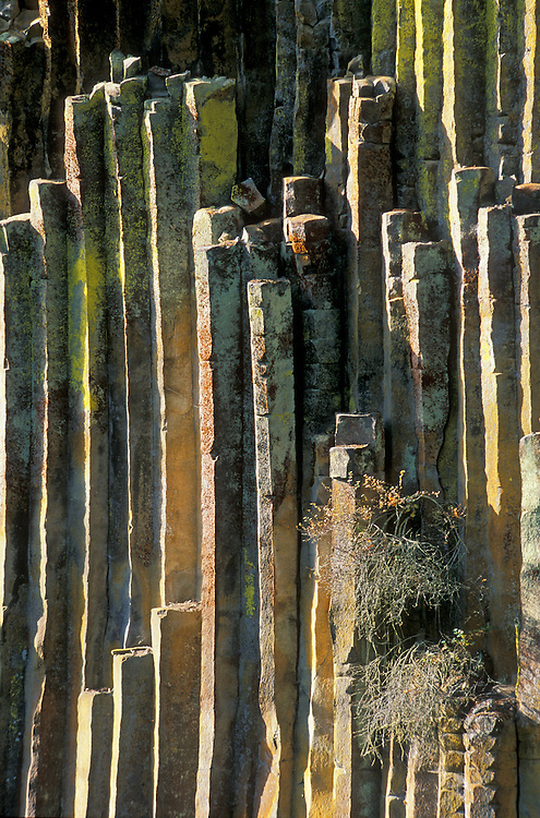 Columnar basalt lava rock formation on the North Umpua River at Soda Springs, Cascade Mountains, Oregon.